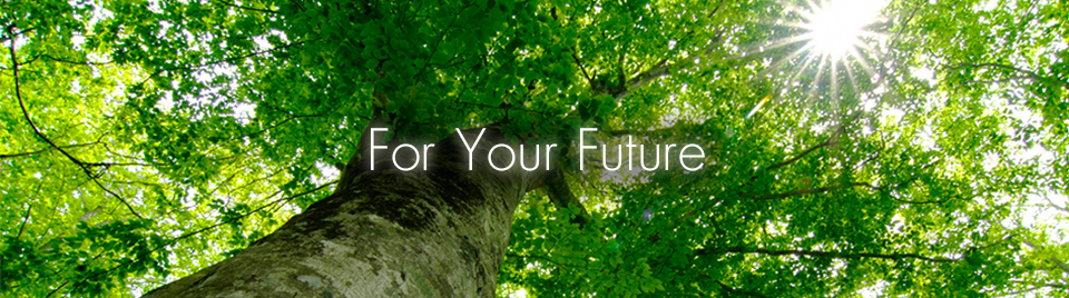 For Your Future